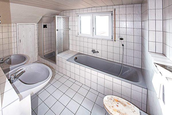 Badewanne, WC, Dusche, Spülkasten, Fliesen